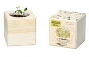 ЭКОКУБ (ECB-01-10) Акация, Набор для выращивания